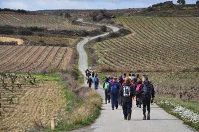 Camino y vino, GR-38 Ruta del vino y del Pescado
