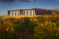 Vino y chocolate en Bodega Portia