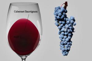 Cabermet Sauvignon