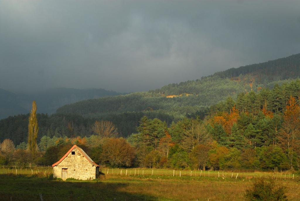 Bosques Navarros, otoño, Valle Belagua