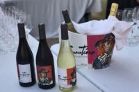 Modos y maneras de conservar frío el vino