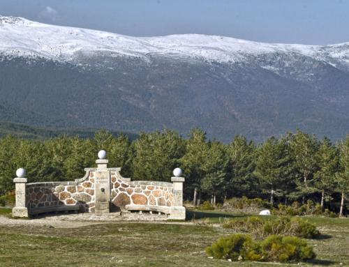 De vinos por la Sierra de Madrid