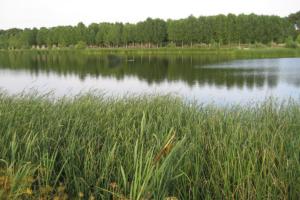 El placer de un nómada moderno, Embalse río Voltoya