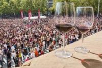 Vendimia Land, Fiestas de San Mateo, Logroño