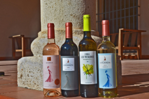 Pueblos para un puente en La Mancha, Bodegas Condesa de Leganza, botellas de vino, Ruta Quijote