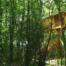 Navarra vino y siesta en los árboles, Basoa Suites