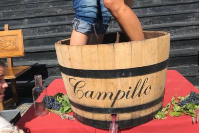 Vendimia Experience en bodega Campillo