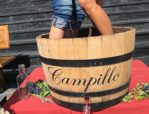 Vendimia Experience en Bodegas Campillo