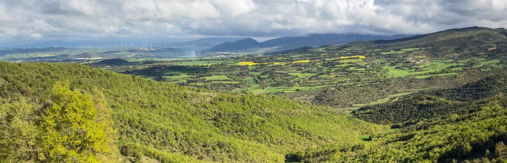 Territorio picnic, Valle de Valdorba