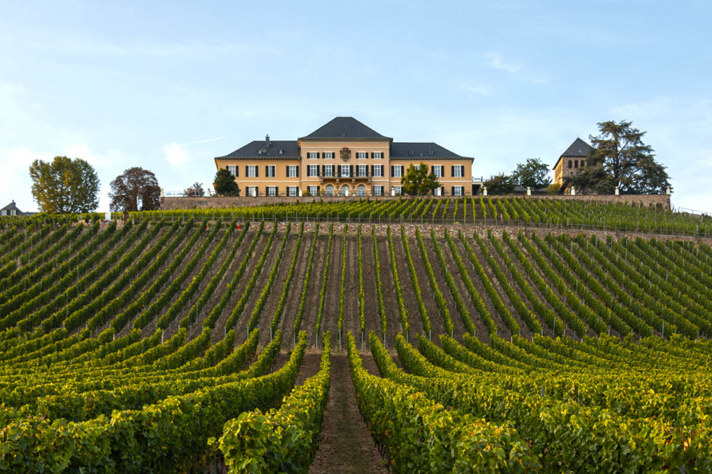 Jardines con viñedos, Schloss Johannisberg