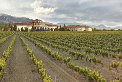 Jardines con viñedos, Bodegas Campillo
