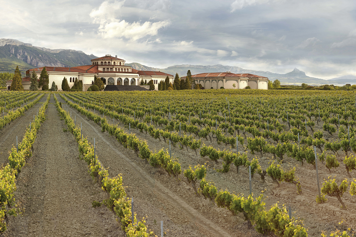 Jardines con viñedos