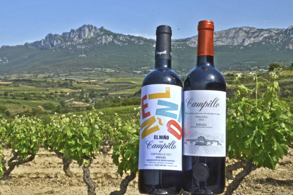 Árboles los guardianes del viñedo