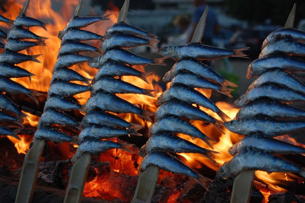 Vino y sardinas